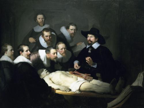 anatomy_lesson